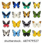 colorful realistic butterfly... | Shutterstock .eps vector #687479527