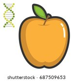 a yellow apple and a dna helix. ... | Shutterstock .eps vector #687509653
