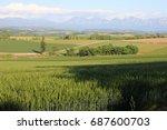 landscape of biei hokkaido japan | Shutterstock . vector #687600703