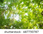 green bokeh from tree | Shutterstock . vector #687750787