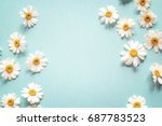 Blue Background With Chamomile...
