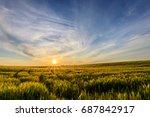 scene of sunset on the field... | Shutterstock . vector #687842917