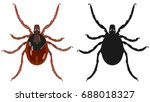 vector image of an insect tick... | Shutterstock .eps vector #688018327