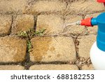 man removes weeds from the... | Shutterstock . vector #688182253