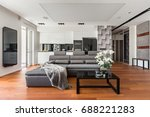 open living room with gray sofa ... | Shutterstock . vector #688221283