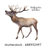 watercolor red deer. hand... | Shutterstock . vector #688952497