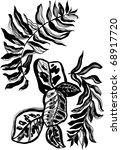 graphic plants   Shutterstock . vector #68917720
