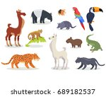 collection of south american... | Shutterstock . vector #689182537