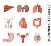 set of simple human internal... | Shutterstock .eps vector #689206537