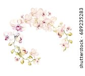 watercolor wreath with orchid... | Shutterstock . vector #689235283