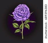 Hand Drawn Violet Rose Flower...