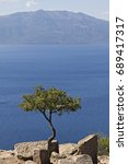 single tree against the aegean... | Shutterstock . vector #689417317
