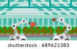 robot picking tomatoes in... | Shutterstock .eps vector #689621383