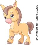 Illustration Of Cute Baby Horse