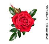 flower composition. a bud of a...   Shutterstock . vector #689869207