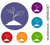 growing plant icons set in flat ...   Shutterstock . vector #689881087