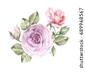 watercolor roses | Shutterstock . vector #689968567