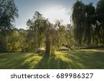sunrise through the trees with... | Shutterstock . vector #689986327
