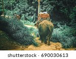 tourists riding elephants... | Shutterstock . vector #690030613