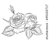 two hand drawn rose flowers in... | Shutterstock . vector #690103717