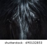 andalusian black horse with... | Shutterstock . vector #690132853