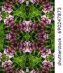 Kaleidoscope View Of Flower...