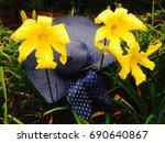 Three Damp Yellow Day Lilies...