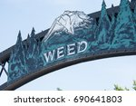 july 5 2015   weed  california  ... | Shutterstock . vector #690641803