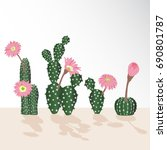 set of cactuses  hand drawn...   Shutterstock .eps vector #690801787
