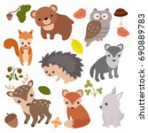 forest animals vector set of... | Shutterstock .eps vector #690889783