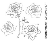 roses in a pattern on a white... | Shutterstock .eps vector #690891847