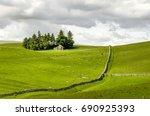sunlit fields of sheep on...