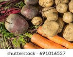 a closeup view of freshly... | Shutterstock . vector #691016527