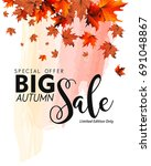 autumn sale banner with... | Shutterstock .eps vector #691048867