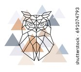 owl geometric head.... | Shutterstock .eps vector #691074793