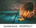 raw wild chanterelles mushrooms ... | Shutterstock . vector #691093117