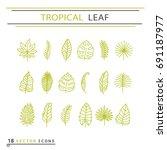 icon set   tropical leaf. eps... | Shutterstock .eps vector #691187977