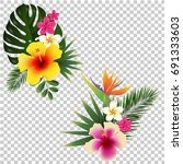 tropical flower set transparent ... | Shutterstock .eps vector #691333603
