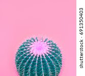 cactus. art gallery fashion... | Shutterstock . vector #691350403