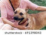 happy dog portait  woman... | Shutterstock . vector #691398043