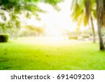 blur green grass and coconut... | Shutterstock . vector #691409203