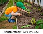 child in the garden | Shutterstock . vector #691493623
