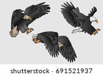 vector hand drawn eagle flying | Shutterstock .eps vector #691521937