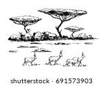 Sketch Of The African Savanna...
