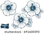 hibiscus flower sketch.... | Shutterstock .eps vector #691600393