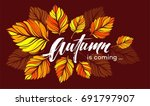 Fall background design with colorful autumn leaves. Vector illustration EPS10