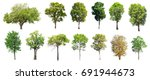 collection of isolated trees on ... | Shutterstock . vector #691944673
