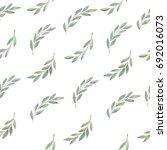 olive branch hand drawn...   Shutterstock . vector #692016073