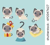 vector collection of different... | Shutterstock .eps vector #692047627
