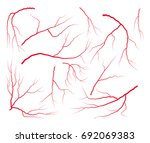 vein blood set vector symbol... | Shutterstock .eps vector #692069383